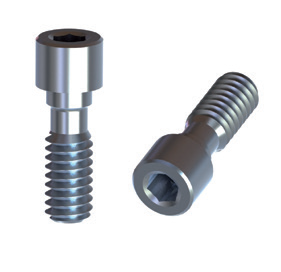 BTI Internal 4,1 Titanium Screw