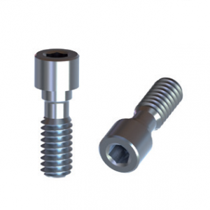 BTI Internal 5,5 Titanium Screw