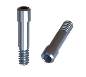 Biomet 3i Certain 4,1 Titanium Screw for Enganging