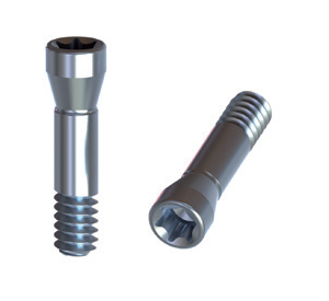 Straumann Bone Level 4,1 Titanium Screw