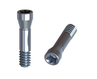 Straumann Bone Level 4,1 Titanium Screw