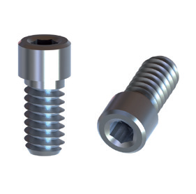 BTI External Hex 3,5 Titanium Screw 1.25