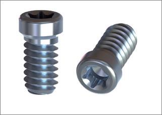 Straumann MultiBase 4,1 Titanium Screw M1,4